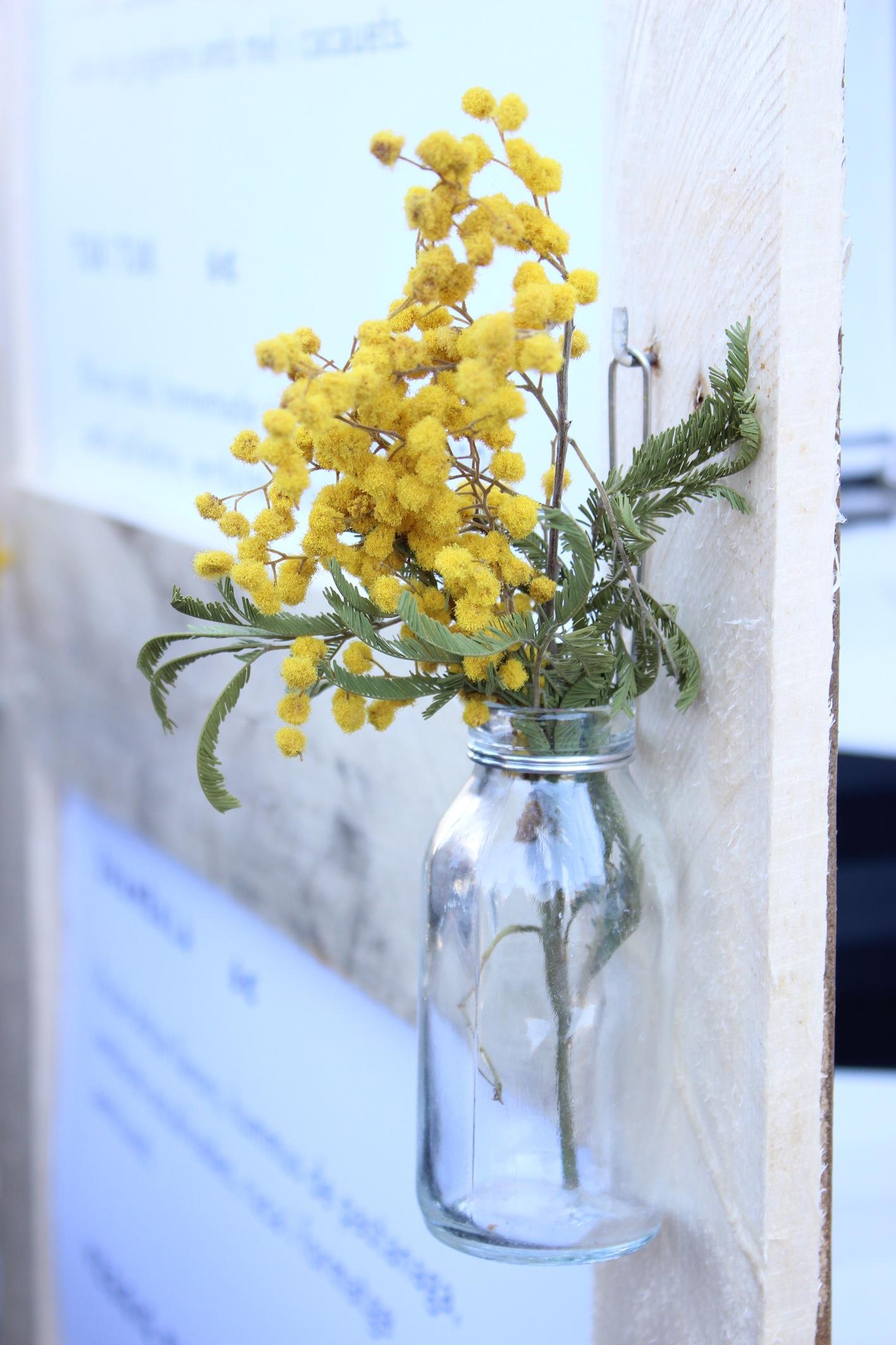 Mimosa, la flor de Caravan Made